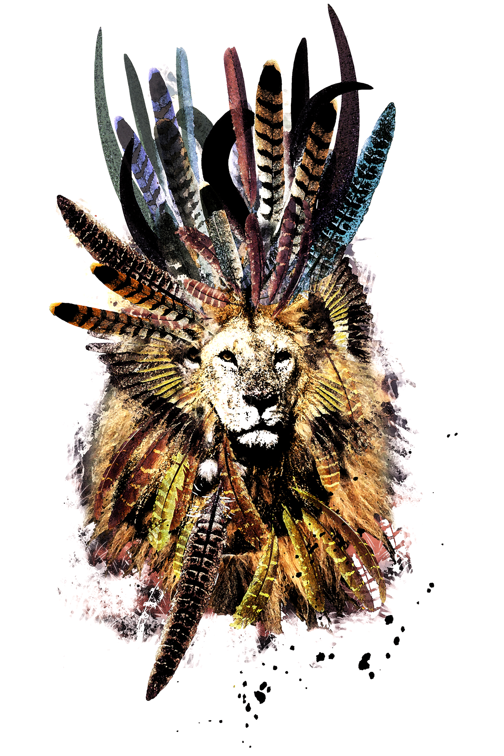 Feather Lions W12