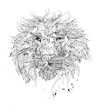 Lines Lion W12