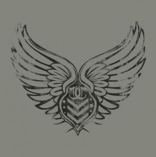 Wings us