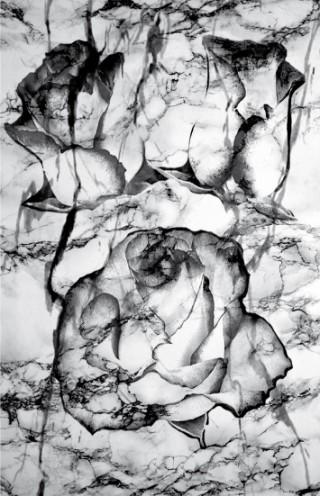 Print Marble