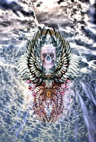 wings sky