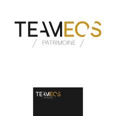 Etude logo Teameos