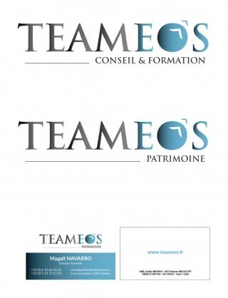 logo Teameos